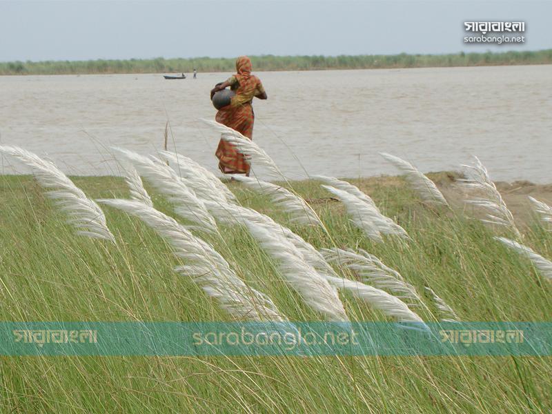 কাশগুচ্ছে মৃদু হাওয়ায় এলো শরৎ