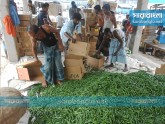 বাজারে কাঁচামরিচের দাম বেড়ে দ্বিগুণ