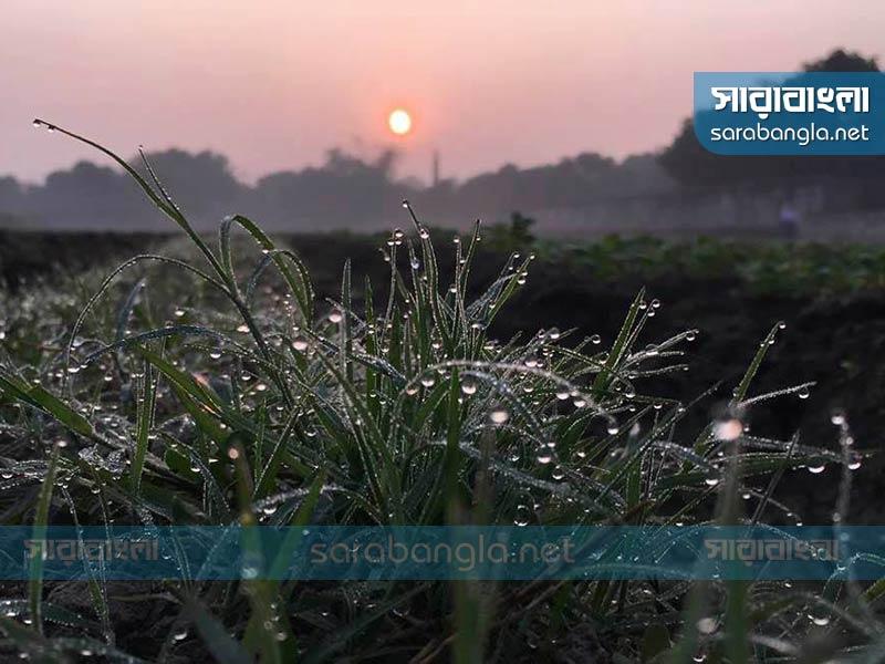 হেমন্তে এসেছে শীত, বাড়তে পারে তীব্রতা