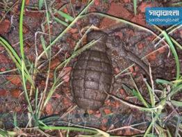 চট্টগ্রামে বিএসআরএমের কারখানা থেকে গ্রেনেড উদ্ধার