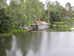 বিপদসীমার ওপরে পানি, সিরাজগঞ্জের বানভাসি মানুষের দুর্ভোগ চরমে