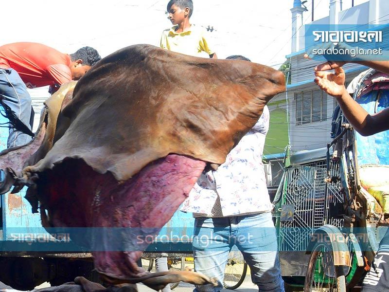 আড়তদারের 'নিয়ন্ত্রণেই' চট্টগ্রামে চামড়া কেনাবেচা