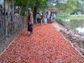 ময়মনসিংহে সড়ক উন্নয়নে ৩ হাজার কোটি টাকার প্রকল্প প্রস্তাব