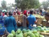 রাজশাহীর আম বাজার