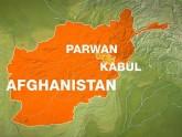 আফগানিস্তান, আত্মঘাতী হামলা, ন্যাটো সদস্য নিহত