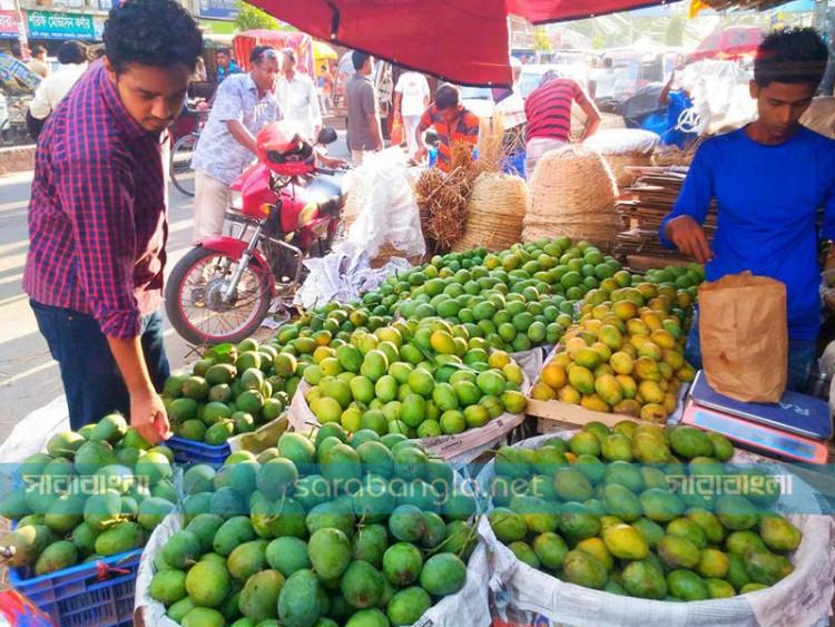 রাজশাহী, চাঁপাইনবাবগঞ্জে 'ম্যাঙ্গো ট্যুর'