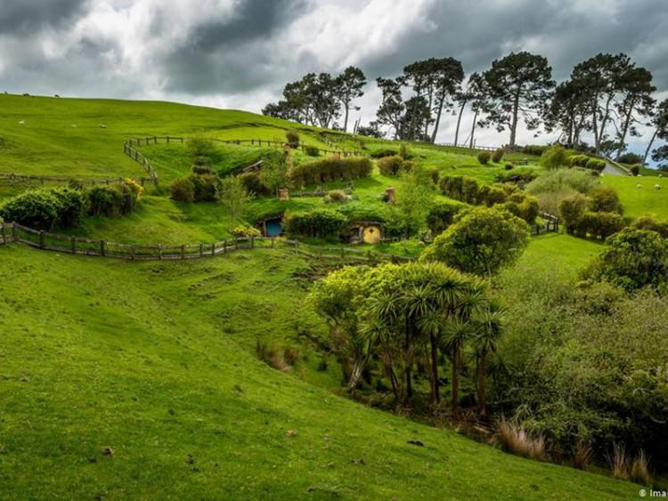নিউজিল্যান্ডকে কার্বন নিরপেক্ষ করতে পার্লামেন্টে বিল পাস
