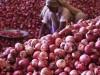পেঁয়াজ রফতানির ওপর নিষেধাজ্ঞা তুলে নিলো ভারত