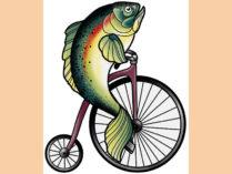 'বাইসাইকেল ছাড়া মাছ যেমন, পুরুষ ছাড়া নারী তেমন'