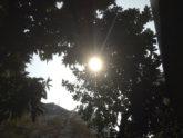 দিনে ঝলমলে রোদ, রাতে ঝড়-বৃষ্টির সম্ভাবনা