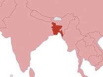 'দক্ষিণ এশিয়ার অর্থনৈতিক নেতৃত্বে বাংলাদেশ'