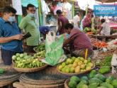 'আলুশূন্য' সিরাজগঞ্জ