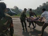 বান্দরবানে ভাল্লুকের আক্রমণে শিশুসহ আহত ৩