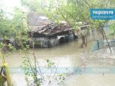 ইয়াস: ভোলায় ৩৫ গ্রাম প্লাবিত, গাছচাপায় একজনের মৃত্যু
