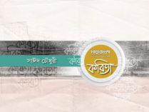 সাঈদ চৌধুরী এর কবিতা— রাজনীতিতে লাউ চোর